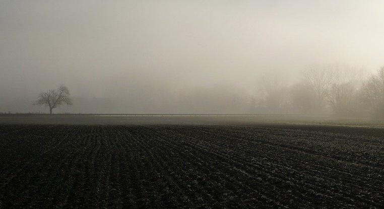 fog-4720316_1280.jpg