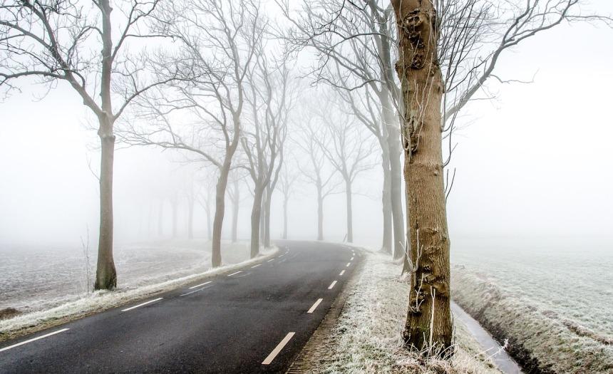 winter-2732973_1280.jpg