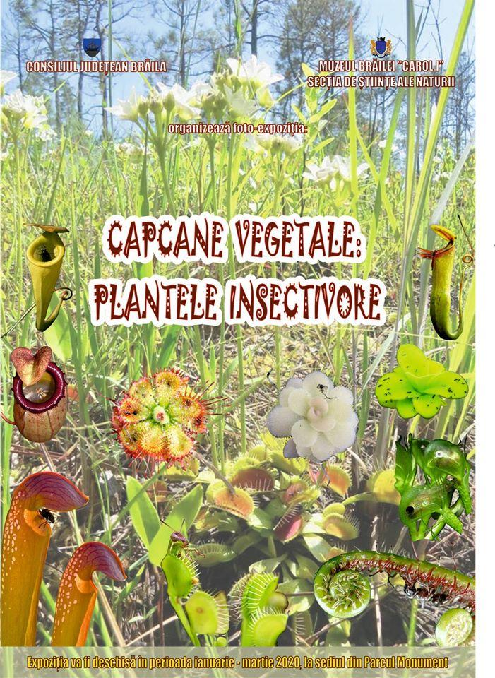 Capcane vegetale Plantele insectivore