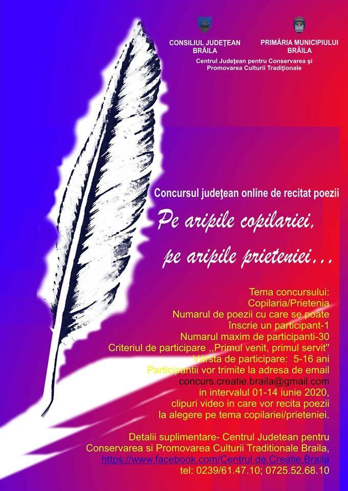 Poster - Pe aripile copilariei, pe aripile prieteniei…